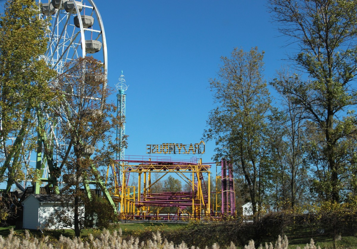 duda-udtr-.Tchernobyl-jdeclarationuniverselledesdroitsdelarbre